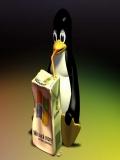 Pinguinu Bea Laptic