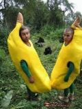Bananele In Africa