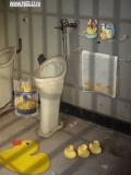 O Toaleta Adevarata