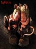 Poze Bebelusi Haiosi