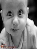 Poze Cu Bebelusi Haiosi