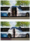 Poze Autobuz
