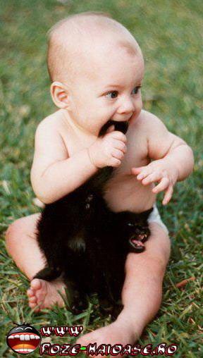 Poze Pisici Si Bebelusi