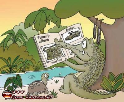 Poze Cu Crocodili