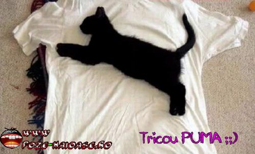 Puma, Tricouri De Firma