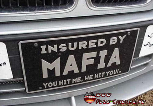 Numar De Inmatriculare Mafia