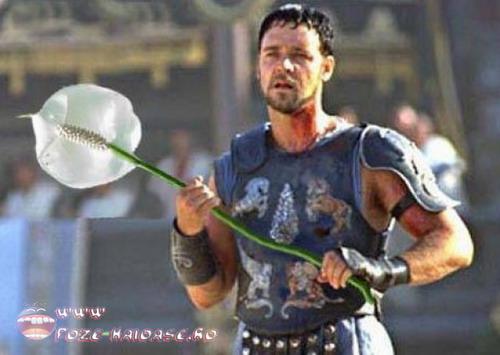 Gladiatorul Vrea Sa Atace
