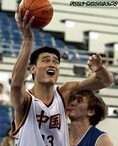 Basket 2020