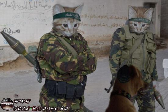 Poze Din Armata